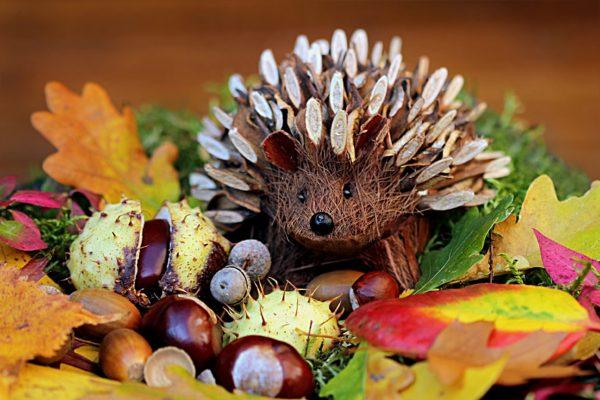 Unsere Öffnungszeiten in den Herbstferien | Zahnarzt Nürnberg